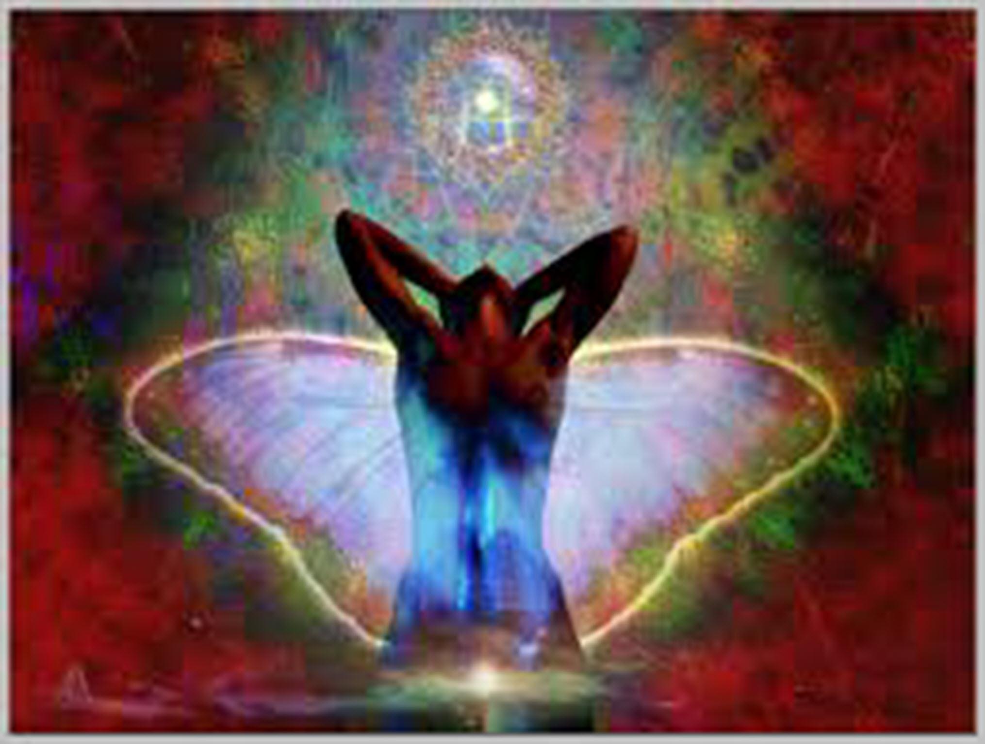 butterflyascension3